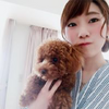 Tomomi Nのアイコン