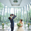 haru_weddingのアイコン