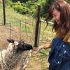 岩渕 理紗子のアイコン
