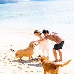ハワイ後撮りの写真 5枚目