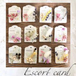 エスコートカードの写真 3枚目