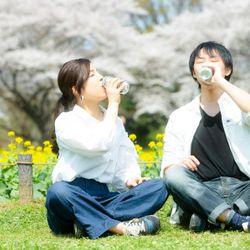 桜エンゲージメントフォトの写真 1枚目