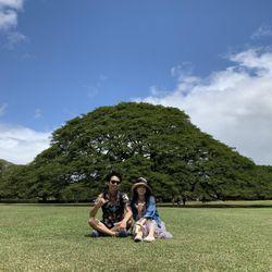 ハネムーン@ハワイの写真 3枚目