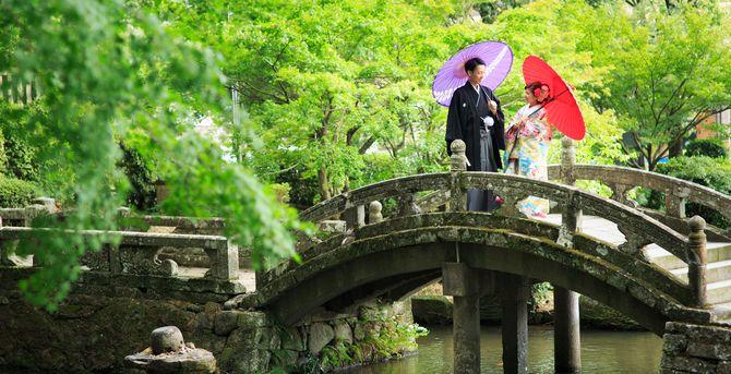 秋子想/TOKIKOSOのカバー写真