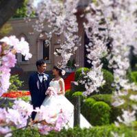 kashiwa_nihonkakuさんのロイヤルガーデンパレス 柏 日本閣カバー写真 3枚目