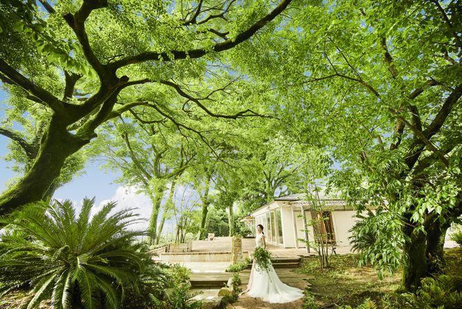 メゾン・ド・フォレスト(Maison de Forest)のカバー写真