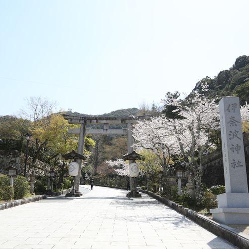 伊奈波神社の公式写真2枚目