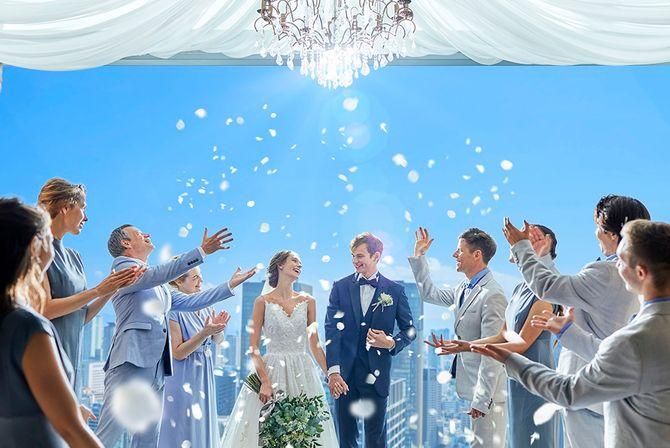 The 33 Sense of Wedding(ザ・サーティスリー センス・オブ・ウエディング)のカバー写真