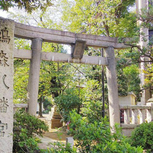 鳩森八幡神社の公式写真2枚目