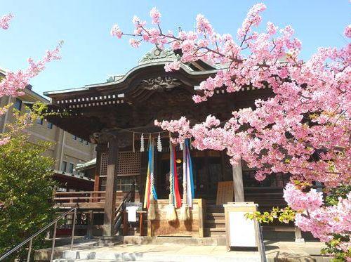 桜神宮の公式写真3枚目