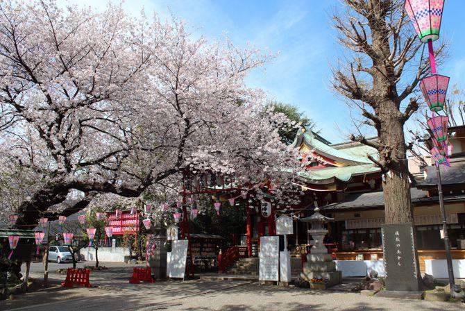 居木神社のカバー写真