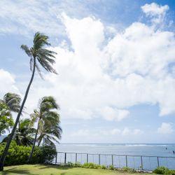 ハワイ挙式_挙式の写真 6枚目