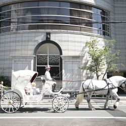 馬車 リムジンの写真 2枚目