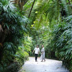 前撮り 沖縄  東南植物楽園の写真 7枚目