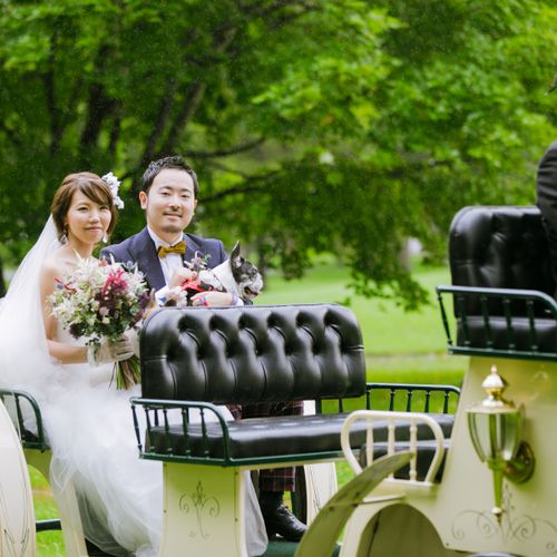 22milk_wedding22さんのノーザンホースパーク写真2枚目