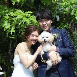 犬と一緒にweddingの写真 1枚目