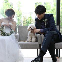 犬と一緒にweddingの写真 5枚目
