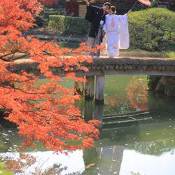 紅葉前撮りの写真 2枚目