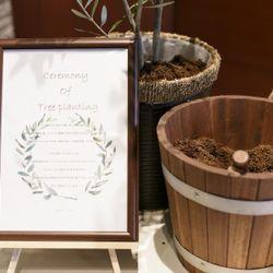 Tree planting ceremonyの写真 1枚目