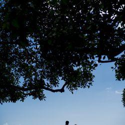 ハワイフォトツアーの写真 2枚目