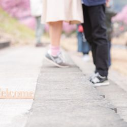 河津桜エンゲージメントフォトの写真 3枚目