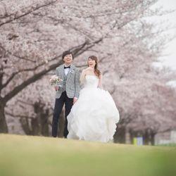 桜ウェディングフォトの写真 3枚目