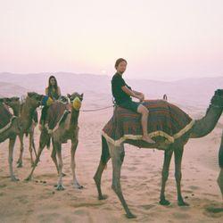 ハネムーンリワ砂漠の写真 3枚目