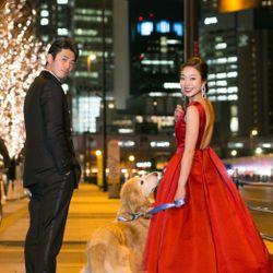 前撮り【愛犬・赤ドレス】の写真 4枚目