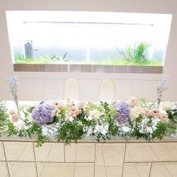 お花関係の写真 10枚目