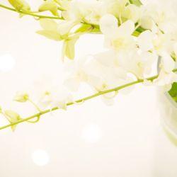 チャペル装花の写真 1枚目