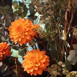 装花・会場装飾の写真 2枚目