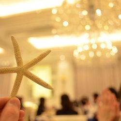 会場装飾【海】の写真 1枚目