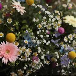 𓍯 ⸝⸝⸝⸝ㅤ装花の写真 6枚目