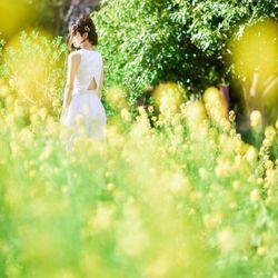 ドレス×桜の写真 6枚目