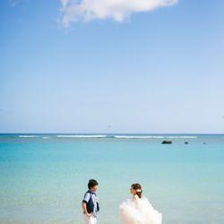ハワイ後撮りの写真 23枚目