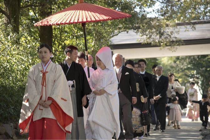 下鴨神社のカバー写真