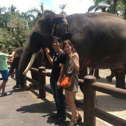 Honeymoon Baliの写真 20枚目