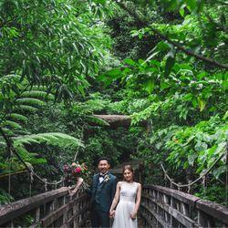 ジャングル前撮りの写真 2枚目