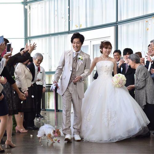 wed_aya3さんのザ コルトーナ シーサイド台場写真3枚目
