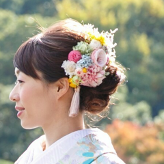 haru_wdgさんのプロフィール写真