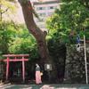 菊地麻衣のアイコン