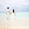 wa_wedding07のアイコン画像