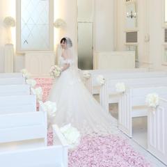 tt_wedding518さんのアイコン画像
