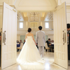 maican__y__weddingのアイコン
