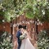 chiaki_wedding1207のアイコン