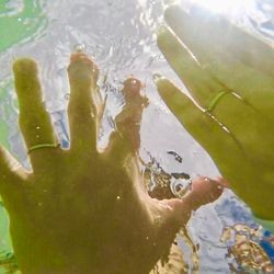 ハネムーン:天空の海の写真 3枚目