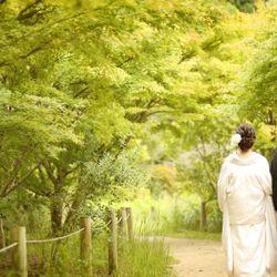 国宝 白水阿弥陀堂 の写真 3枚目