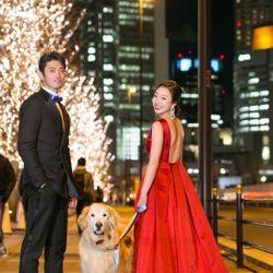 前撮り【愛犬・赤ドレス】の写真 2枚目