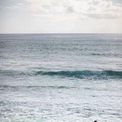 ハワイ後撮りの写真 3枚目