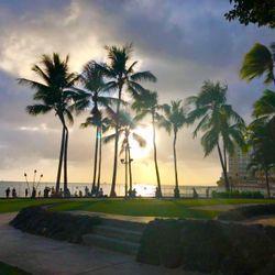 hawaii honeymoonの写真 1枚目
